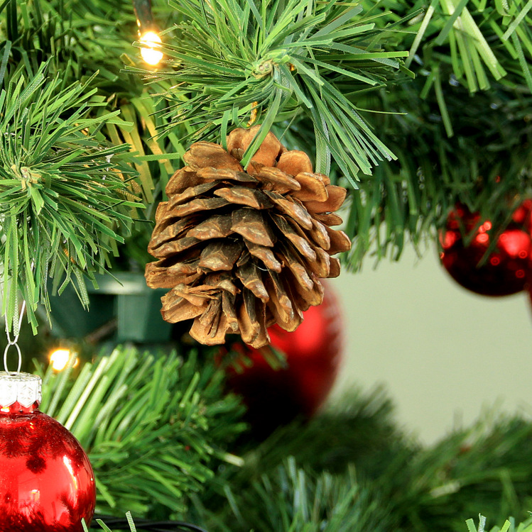 Kerstballen Dennenappel (9ST)