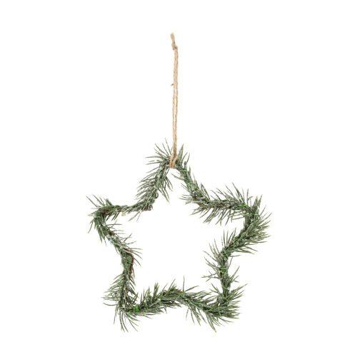 kerst-ornament-botanical-star