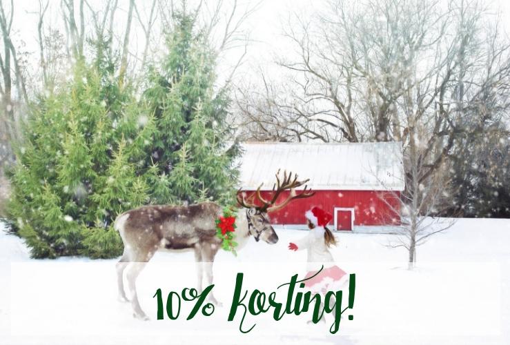 10% korting op onze kerstversiering!