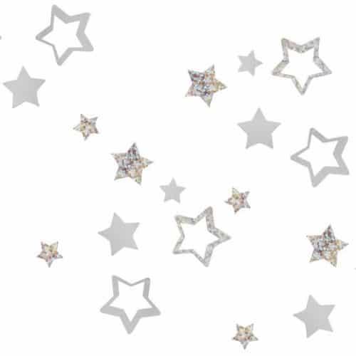 kerstversiering-confetti-silver-star-silver-glitter-2