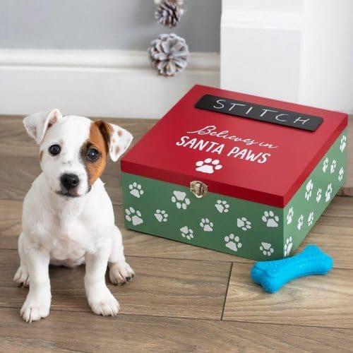 kerstversiering-cadeaubox-voor-honden-santa-paws