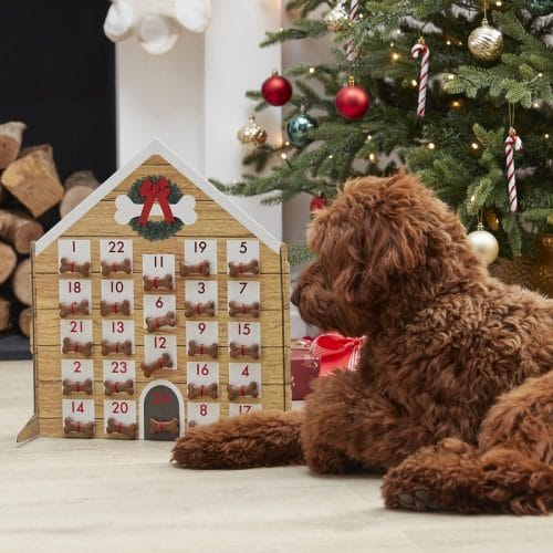 kerstversiering-adventskalender-voor-je-hond-merry-everything-2